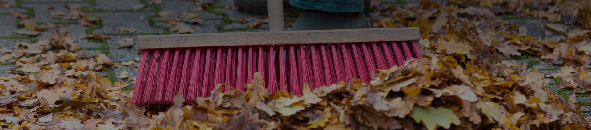 Zamiatanie liści